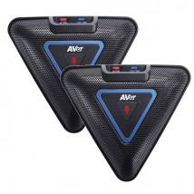 AVer - Paire de microphones d'extension pour VC520