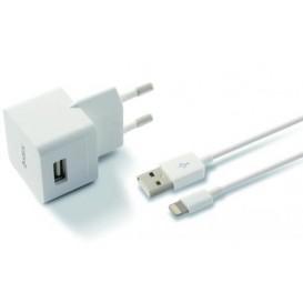 Chargeur USB avec adaptateur mural pour Apple iPhone