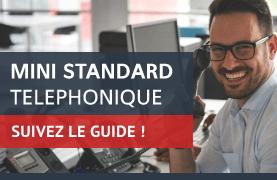 Guide d'achat mini standard téléphonique